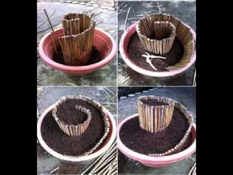 Do it yourself backyard crafts tips