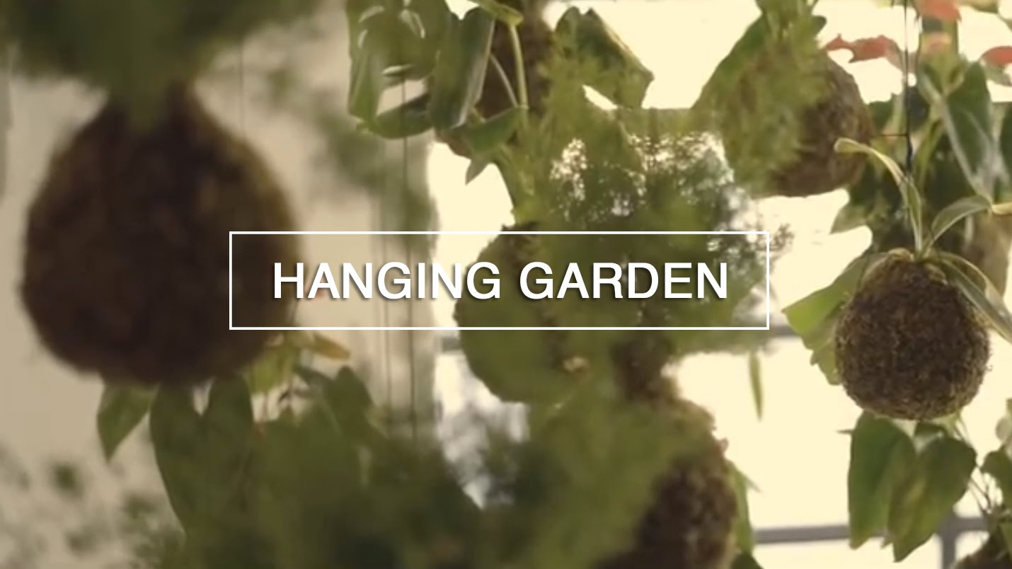 Diy Hanging String Backyard garden – Inexperienced Renaissance