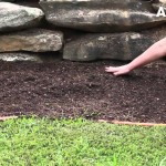 How to Begin a Flower Backyard