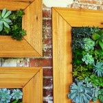 Do-it-yourself Vertical Succulent Backyard