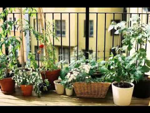 Do it yourself Smaller balcony back garden thoughts