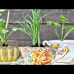 30 Incredible Do-it-yourself Indoor Herbs Garden Strategies