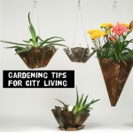 seventeen Clever Town Gardening suggestions