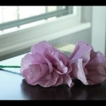 Crafting Paper Flowers Easy DIY for Spring