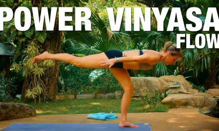 Power Vinyasa Flow Yoga Class – Five Parks Yoga