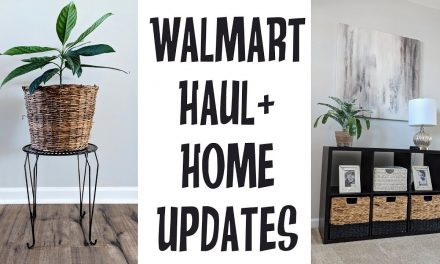 Mini Walmart Haul+Home Decor Updates+Thrifted DIY Makeover Ideas