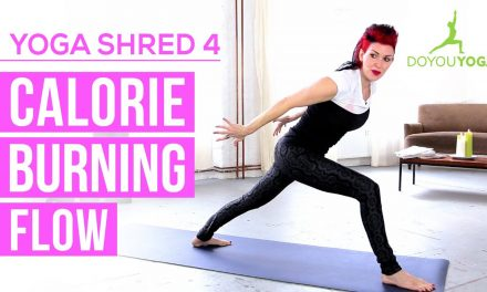Calorie Burning Flow | Day 4 | 14 Day Yoga Shred Challenge