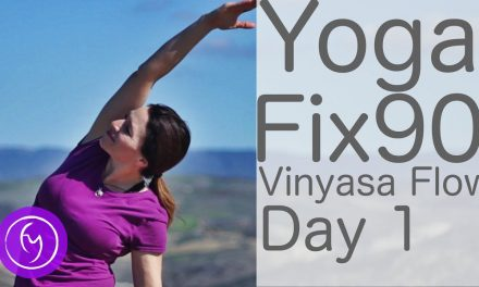 30 Minute Yoga Fix 90 Day 1 Vinyasa Flow | Fightmaster Yoga Videos