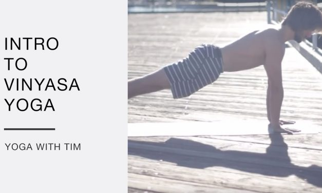 Intro To Vinyasa Yoga With Tim Senesi