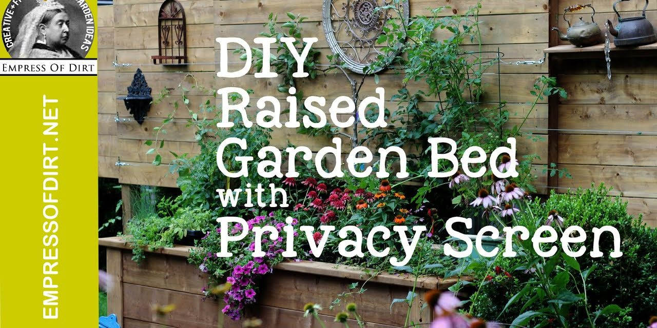 DIY Raised Garden Bed with Privacy Wall