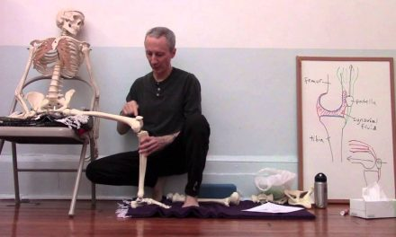 Yoga anatomy: Knee alignment in Warrior II