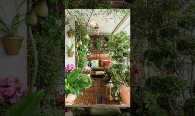 Indoor Gardening Ideas | DIY Projects