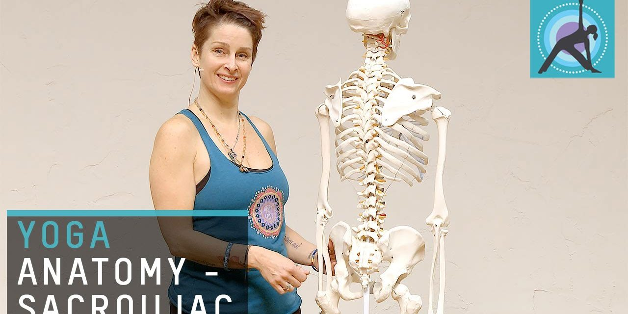 Yoga anatomy – Anatomical insight into the sacroiliac joint
