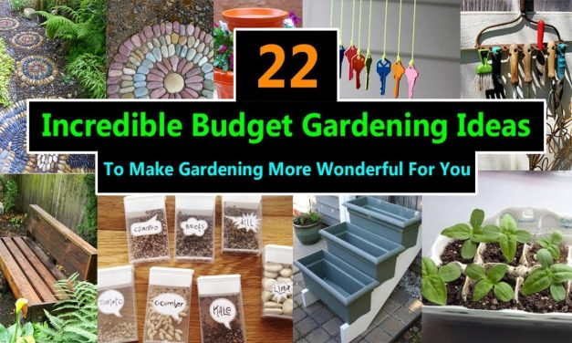 22 Incredible Budget Gardening Ideas | Garden Ideas On A Budget