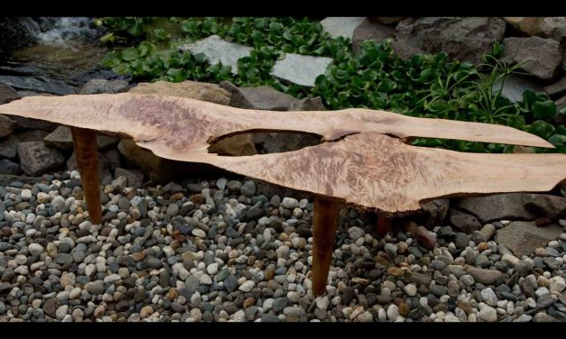 How To Make A Live Edge Coffee Table / DIY Woodworking Project