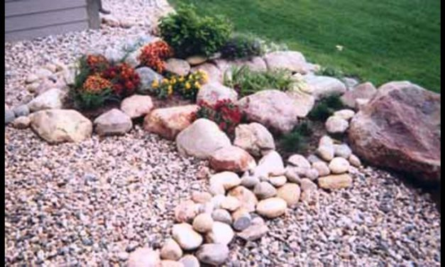 [Garden Ideas] Rock gardens designs